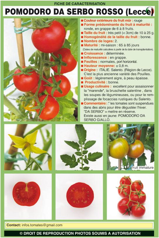 Pomodoro Da Serbo Rosso